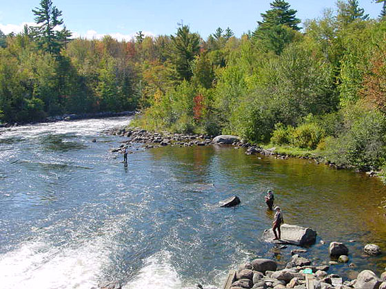 Rangeley registered maine guides rangeley for Fly fishing guides near me